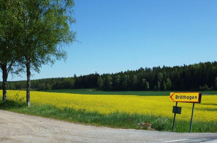 Fina motorcykelvägar i sommar
